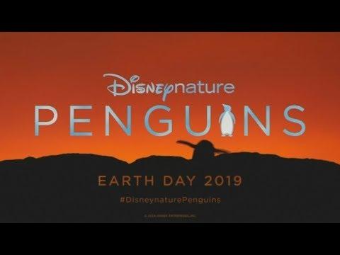 4 ملايين دولار إيرادات فيلم Penguins  - نشر قبل 16 ساعة