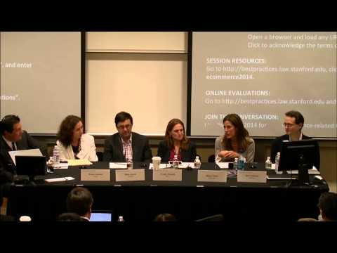 E-Commerce 2014 | Litigating Privacy Policies & Terms of Use& Lessons for Transactional Lawyers