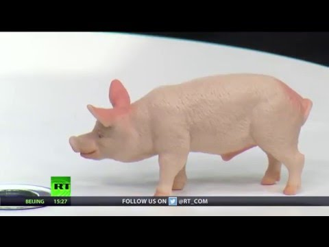 Keiser Report: Pork Barrel Politics (E900)