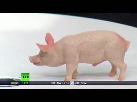 Keiser Report: Pork Barrel Politics (E900)