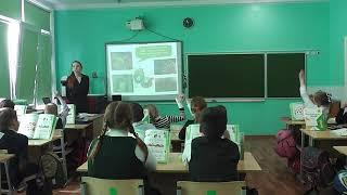 Фрагмент урока по окружающему миру 1 класс.