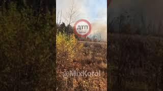 В Киеве горит парк Берёзка. Пожар в экосистеме. Горит лес и камыши улица Крайняя