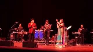 Alka Yagnik Udit Narayan Concert-25