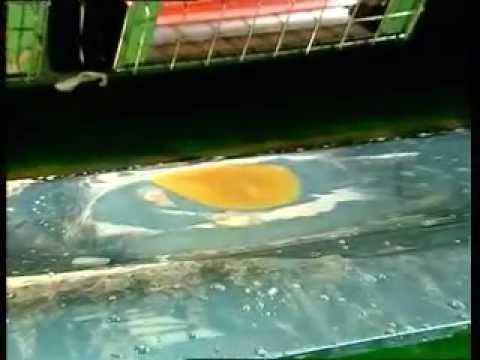 Nippon Paint spackling.wmv