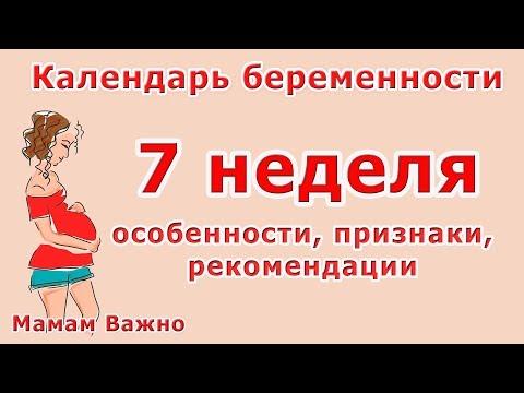 Седьмая |7| неделя беременности: особенности, рекомендации, симптомы