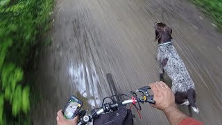 Video How to train dog to run along with your bicycle off leash. download MP3, 3GP, MP4, WEBM, AVI, FLV November 2017