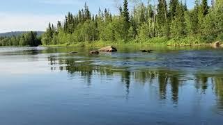 Река Нота, порог Девичий 2018 / The Nota River