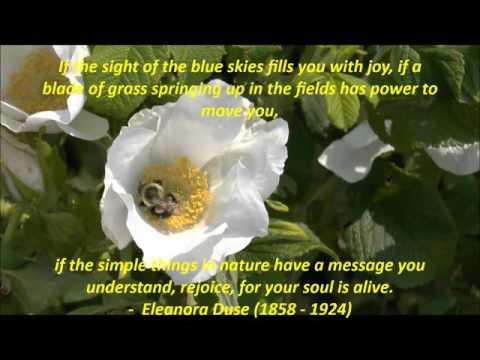 Eleanora Duse quote - BishopTrips