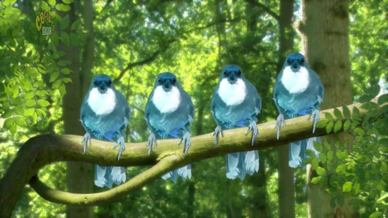 In The Night Garten - BLUE BIRDS SONG   - YouTube