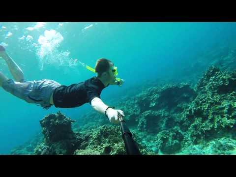 Vanuatu (Iririki resort, Mele Cascades, Port Havannah Snorkeling)