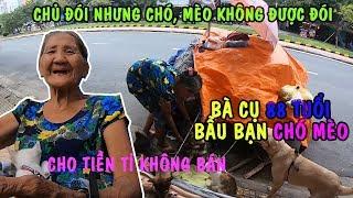 Bà Lão 88 Tuổi Ngủ Vỉa Hè Cùng Đàn CHÓ MÈO Thấy Xót Thương   PHONG BỤI