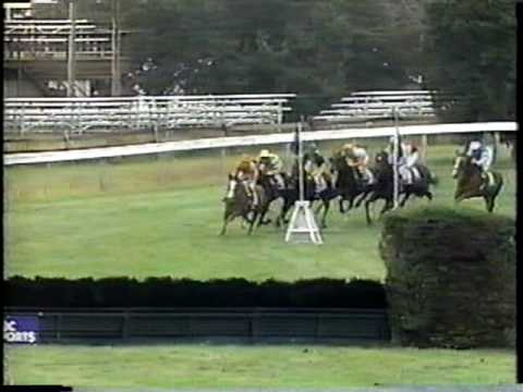 1986 Breeders Cup Steeplechase (NBC)