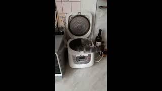 Кот и мультиварка!
