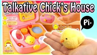 Talkative Chick
