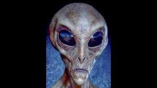Reptilian Hybrids, Gang Stalking, Alex Jones, Demonic USA
