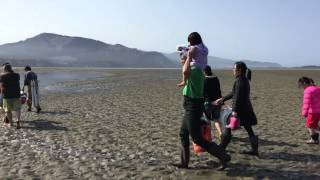 Đi bắt ốc vòi voi biển Tillamook