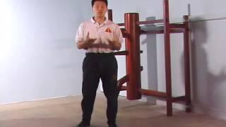 Wooden Dummy Wing Chun Kung Fu 詠春拳 木人樁