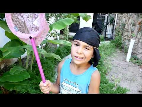 #ЗОМБИ украли цветок! Стрелялки НЕРФ против Зомби 🔫 Игры для Детей Мультик Zombie