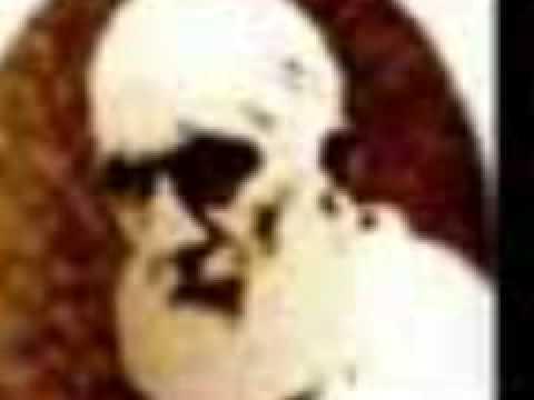 Efendi Hazretleri ( Seyyid Abdulhakim Arvasi Hazretleri )(www.damra.org)