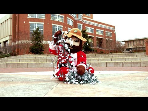 Happy Holidays from UNC Charlotte!