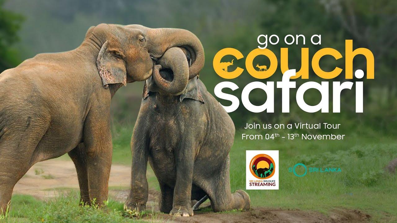 Go on a Couch Safari - Sri Lanka Wildlife Streaming