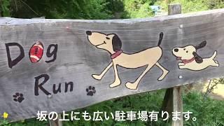 日本百名爆で有名な払沢の滝入口に有るドッグランに行って来た。 八王子...