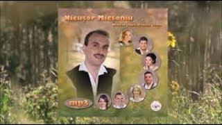 Nicusor Micsoniu si prietenii - Traiesc clipa, traiesc viata COLAJ ALBUM