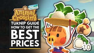 Animal Crossing New Horizons | Turnip Guide, Stalk Market & How to Get the Best Prices