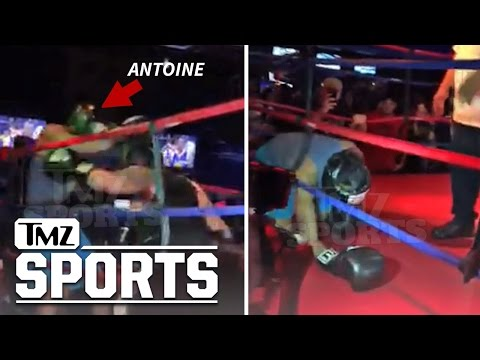 Antoine Dodson Suffers Softest KO Of All Time In Celeb Boxing Match | TMZ Sports