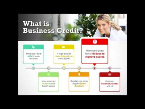 Webinar: 5 Steps to Building Business Credit