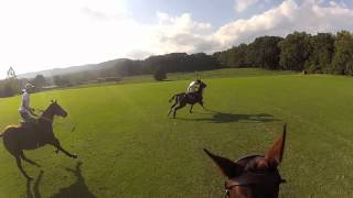 GoPro Polo - University of Virginia