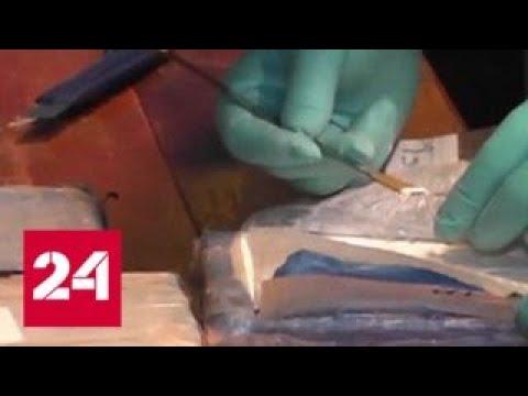 Адвокат: экстрадиция организатора контрабанды кокаина займет месяца три - Россия 24