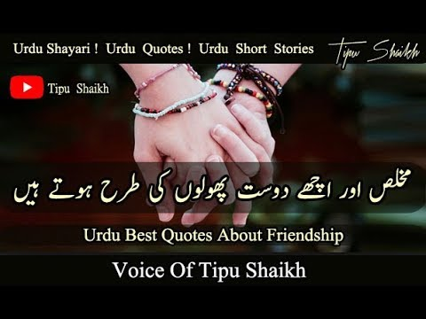 urdu best quotes about friendship voice of tipu shaikh