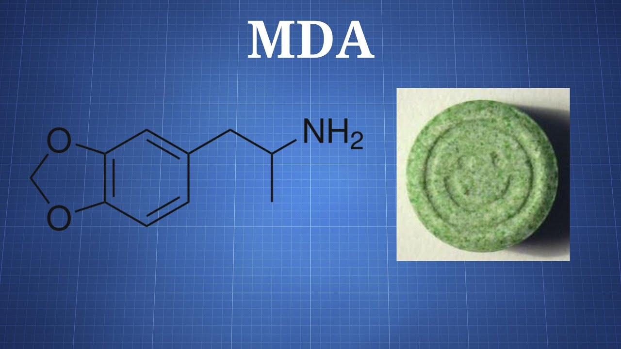 Download MDA: What You Need To Know