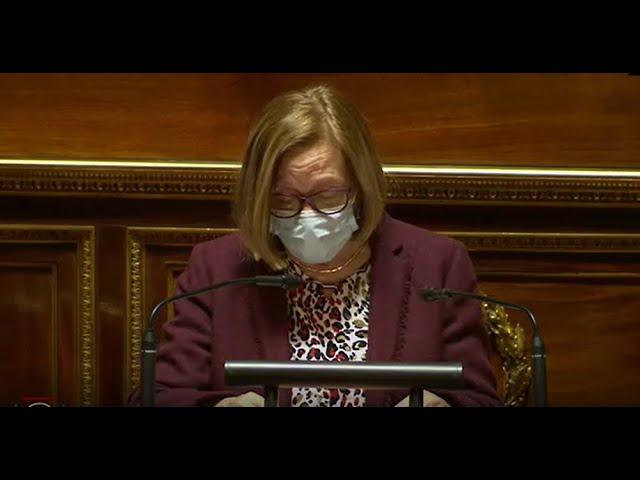 """Colette MÉLOT : PLF 2021 - Mission """"Solidarité, insertion et égalité des chances"""""""
