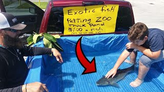 DIY TRUCK FISH POND Aquarium Petting ZOO!!!