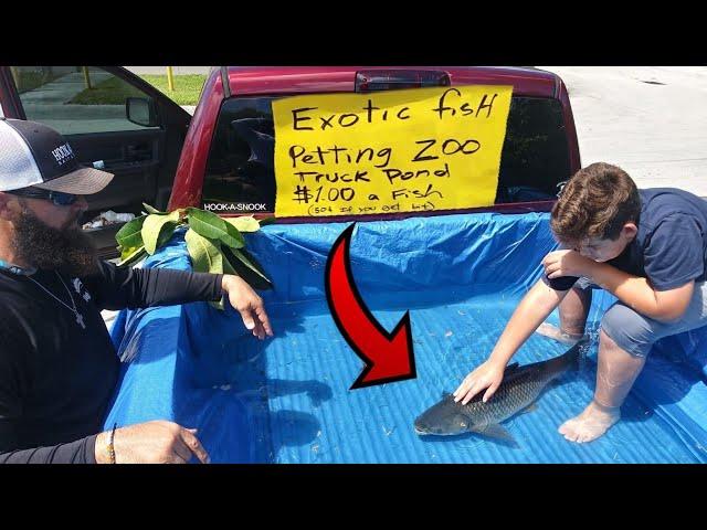 DIY TRUCK FISH POND Aquarium Petting ZOO!!!