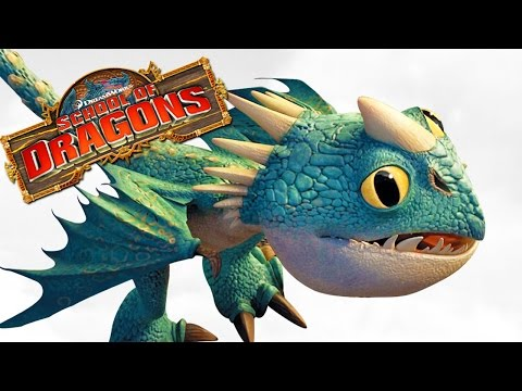 How To Train Your Dragon School Of Dragons New Baby Dragon