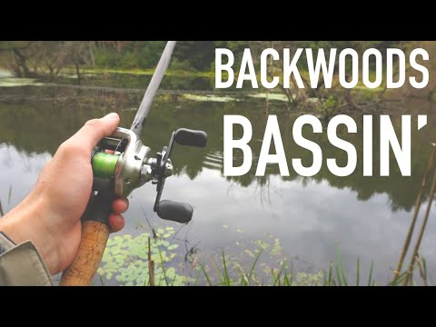 Backwoods Bass Fishing (PB Ohio Bass) -- Bass Daily #5