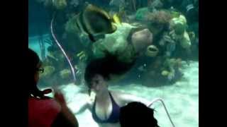 Playful mermaid at the Silverton Casino