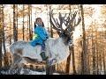 - Reindeer Herding In Snowy Mongolia - The Tsaatan Nomadic People