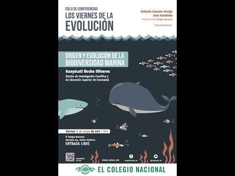Origen y evolución de la biodiversidad marina