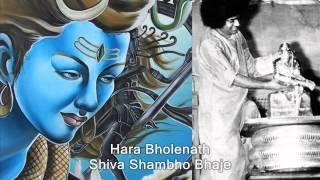 Download Dum Dum Dum Dum Damaru Bhaje - Sai Shiva Bhajan (Students) MP3 song and Music Video
