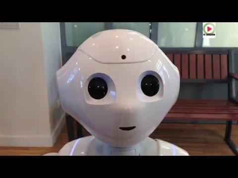 """""""Pepper"""" robot SNCF renseigne et danse à Nort-sur-Erdre - NANTES Bretagne Télé"""