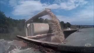 Alimentation des vaches charolaise [GoPro]