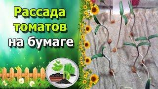 видео Разведопрос: Михаил Васильевич Попов о науке логике как системе