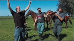 I Jackass e il Cavallo