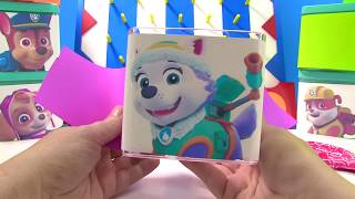 Learn Colors with Paw Patrol Who is in the Toy Surprise Box    Fizzy Fun Toys