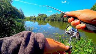 Поймал КРАСНОКНИЖНУЮ РЫБУ Рыбалка на спиннинг на малой реке на вращающиеся блёсна вертушки
