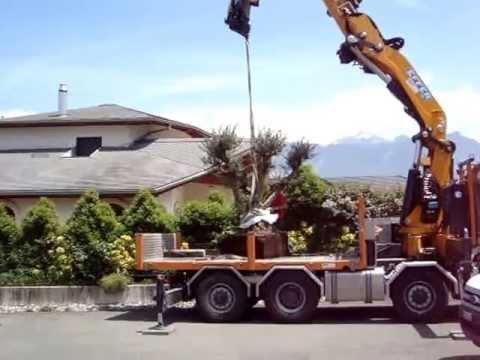 Plantation d\'un olivier de 1400kg 350 ans au camion grue - YouTube